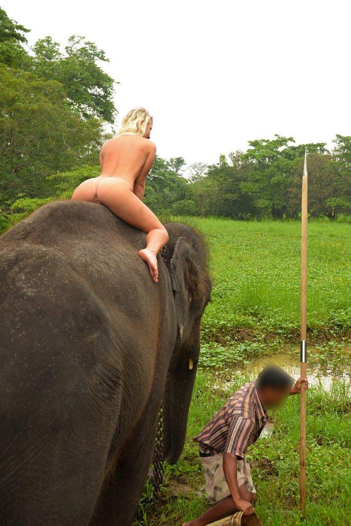 Terry - Sri Lanka - Elephant Ride Picture Gallery-7262